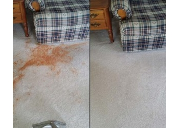3 Best Carpet Cleaners In Rochester Ny Expert