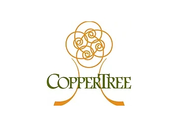 Springfield landscaping company CopperTreeDesigns