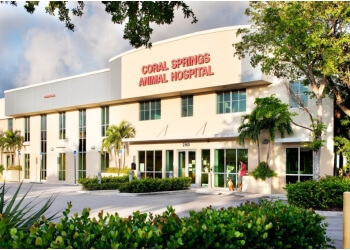 Coral Springs veterinary clinic Coral Springs Animal Hospital