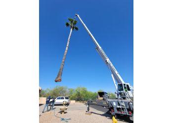 Glendale tree service Core Tree Service, LLC