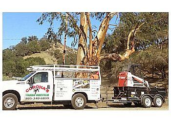 Oxnard tree service Corona's Tree Service