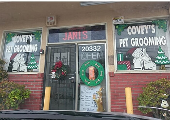 Hayward pet grooming Coveys Pet Grooming