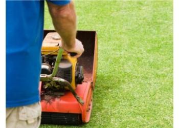 Cox Lawn Maintenance