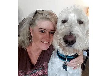 Henderson dog walker Crazy4Paws Pet Sitting