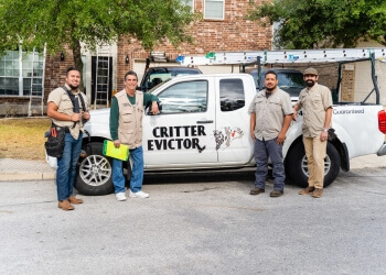 San Antonio animal removal Critter Evictor