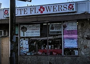 Santa Clara florist Cute Flowers & Gifts