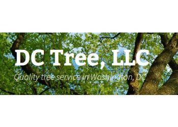 Washington tree service DC Tree, LLC