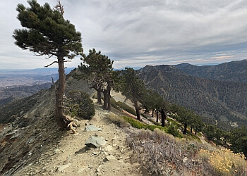 Rialto hiking trail DEVIL'S BACKBONE TRAIL