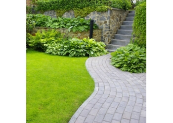 San Antonio landscaping company DNS Landscaping