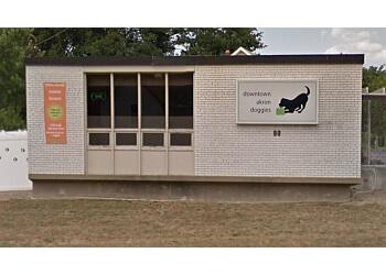 Akron pet grooming DOWNTOWN AKRON DOGGIES, LLC