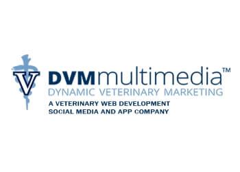 North Las Vegas web designer DVM Multimedia