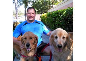 Fort Lauderdale dog walker Daily Dog Walkers & Pet Sitters