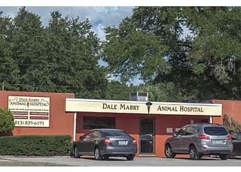 Tampa veterinary clinic Dale Mabry Animal Hospital