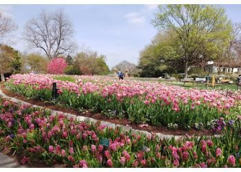 Dallas places to see Dallas Arboretum and Botanical Garden