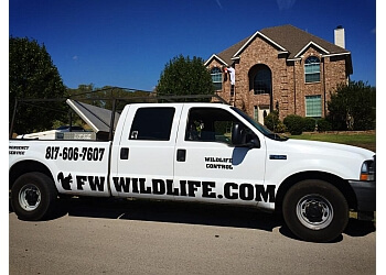 Fort Worth animal removal Dallas Fort Worth Wildlife Control