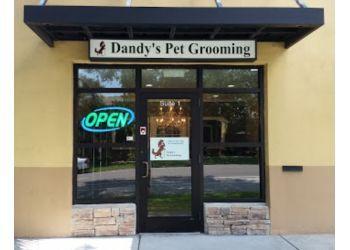 St Petersburg pet grooming Dandy's Pet Grooming