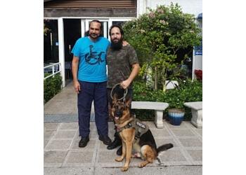 Fort Lauderdale dog training Daniel De La Rosa - Dogs