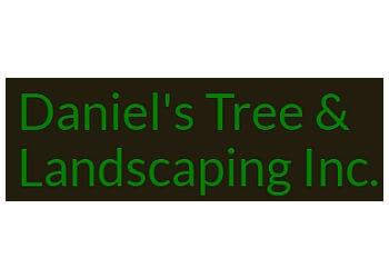 El Paso tree service Daniel's Tree & Landscaping Inc.