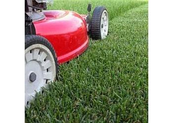 San Bernardino lawn care service Danny's Lawn & Tree Services
