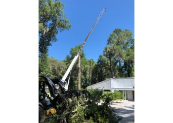 Gainesville tree service Dathan Baties Trees LLC