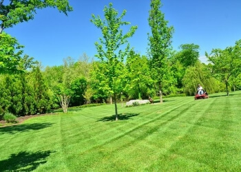 Lancaster lawn care service Day Off Landscaping