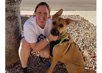 Glendale dog walker Deer Valley Pet Services