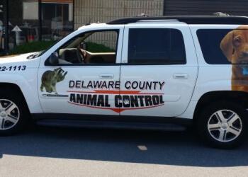 Philadelphia animal removal Delaware County Animal Control