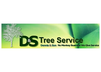 Milwaukee tree service Dennis and Son Tree Service