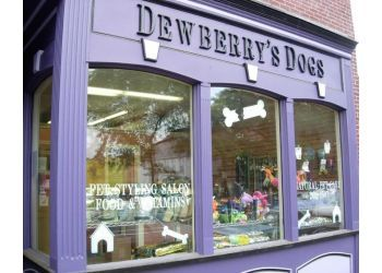 Boston pet grooming Dewberry Dogs & Cats