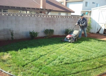 North Las Vegas lawn care service Diamond Cut Lawncare LLC