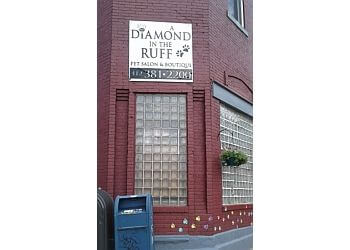 Pittsburgh pet grooming Diamond In the Ruff