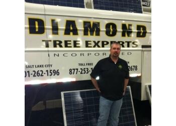 Salt Lake City tree service Diamond Tree Experts