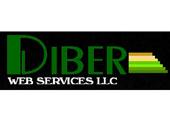 Newark web designer Diber Web Services LLC