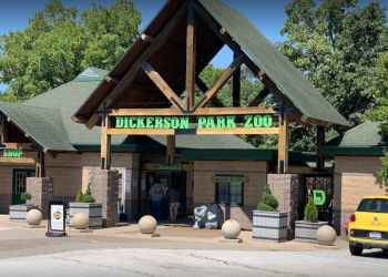 Springfield places to see Dickerson Park Zoo