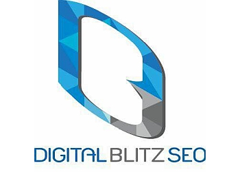 Rochester advertising agency Digital Blitz SEO