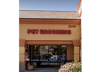Chandler pet grooming Dippity Do Dog