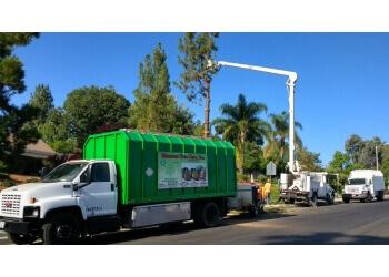 San Bernardino tree service Discount Tree Care Inc.