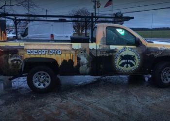 Washington animal removal District Wildlife Solutions
