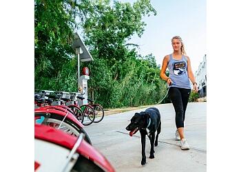 Austin dog walker Dog Butler