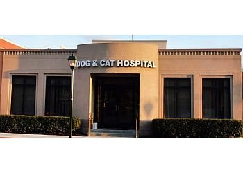 Norfolk veterinary clinic Dog & Cat Hospital