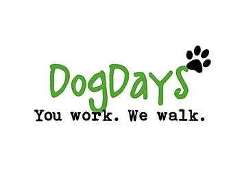 Columbus dog walker DogDays