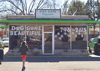 Lubbock pet grooming Dog Gone Beautiful