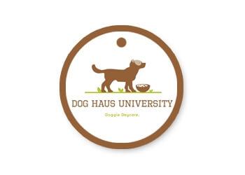 Madison pet grooming Dog Haus University