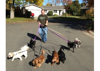 Sacramento dog walker Doggie Bed & Breakfast