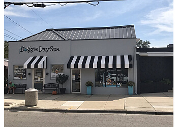 Columbus pet grooming Doggie Day Spa