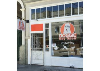 San Francisco pet grooming Doggie Day Spaw