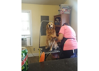Huntsville pet grooming Doggie Do's Pet Service