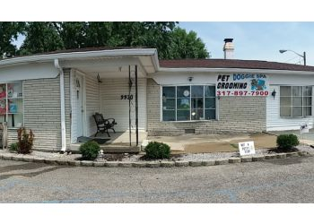 Indianapolis pet grooming Doggie Spa