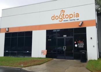 Santa Ana pet grooming Dogtopia