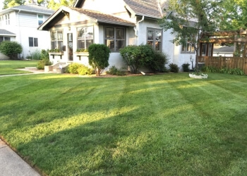 St Paul lawn care service Dorschner Lawn Care